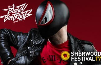 The Bloody Beetroots Live allo Sherwood 2017